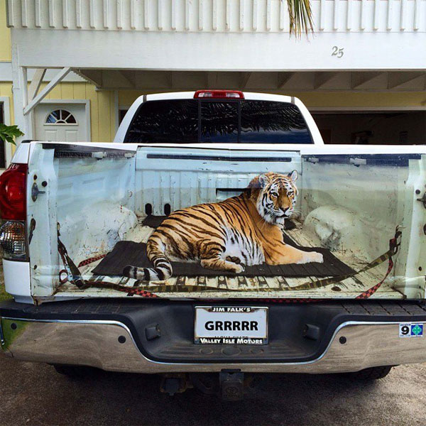 tailgate vinyl decal